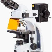 EUROMEX ISCOPE avec dispositif translation éoifluorescence